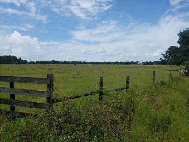 Merle Langford Road, Zolfo Springs, FL 33890 (MLS #A4411180) :: Burwell Real Estate