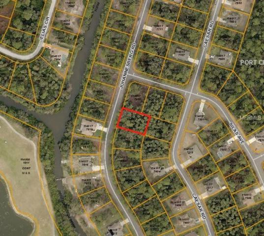 Johannesberg Road, North Port, FL 34288 (MLS #A4411275) :: Griffin Group