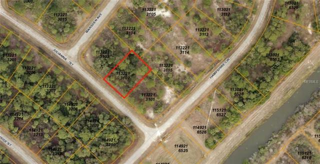 Julianna Street, North Port, FL 34288 (MLS #A4412380) :: The Lockhart Team