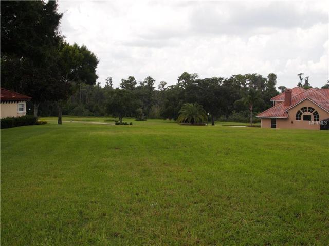 Address Not Published, Clermont, FL 34711 (MLS #A4412569) :: Team Pepka