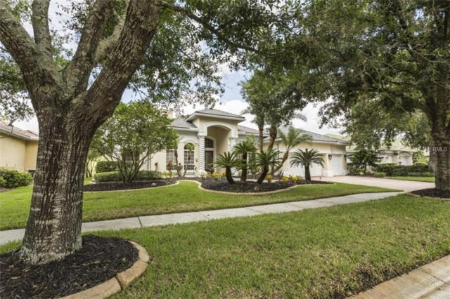 5212 Sand Trap Place, Valrico, FL 33596 (MLS #A4412629) :: The Duncan Duo Team