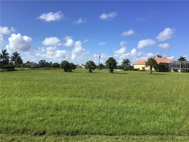 24041 Peppercorn Road, Punta Gorda, FL 33955 (MLS #A4412859) :: G World Properties
