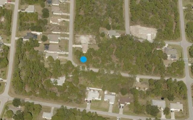 Lapidus Road, North Port, FL 34291 (MLS #A4412865) :: G World Properties