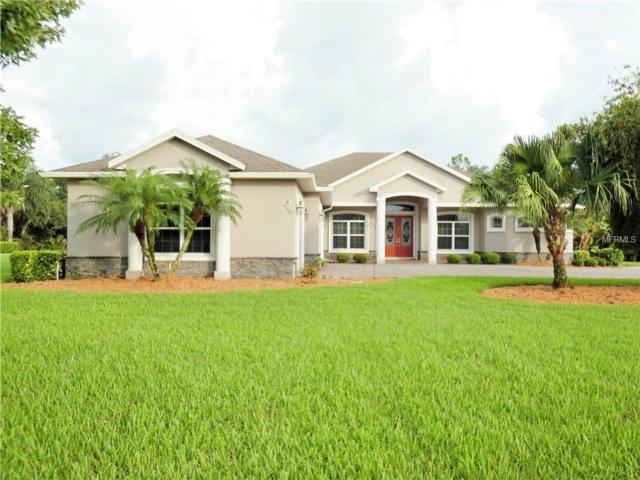 15445 Mulholland Road, Parrish, FL 34219 (MLS #A4413053) :: Team Virgadamo