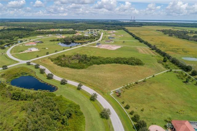 6002 Lake Paddock Circle, Parrish, FL 34219 (MLS #A4413505) :: The Duncan Duo Team