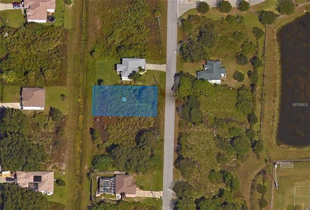 S Narramore Street, North Port, FL 34287 (MLS #A4413527) :: The Light Team