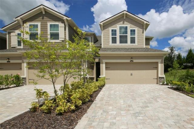 12467 Trailhead Drive, Lakewood Ranch, FL 34211 (MLS #A4413648) :: KELLER WILLIAMS CLASSIC VI