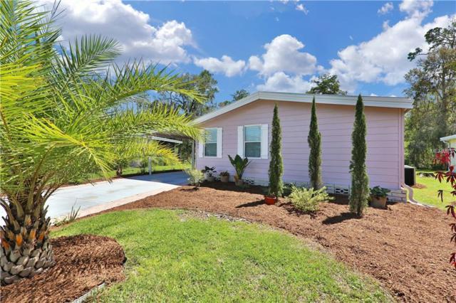 2855 Myakka River Road, Tavares, FL 32778 (MLS #A4413654) :: KELLER WILLIAMS CLASSIC VI