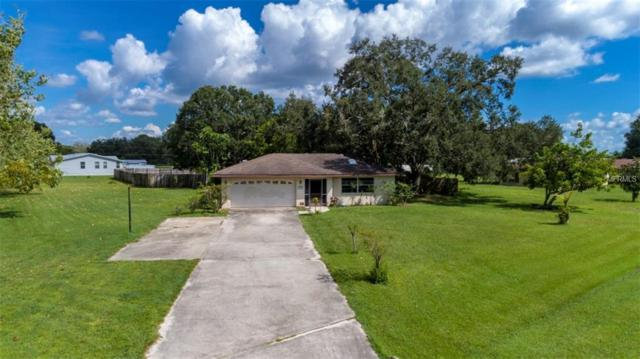 9705 Old Tampa Road, Parrish, FL 34219 (MLS #A4413704) :: Medway Realty