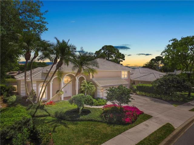 8241 Shadow Pine Way, Sarasota, FL 34238 (MLS #A4413830) :: Medway Realty