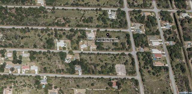 12177 Grosspoint Avenue, Port Charlotte, FL 33981 (MLS #A4413923) :: KELLER WILLIAMS CLASSIC VI