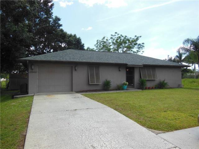 12065 Margarita Avenue, North Port, FL 34287 (MLS #A4413976) :: Medway Realty