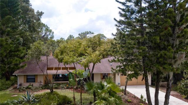 702 136TH Street E, Bradenton, FL 34212 (MLS #A4414042) :: Zarghami Group