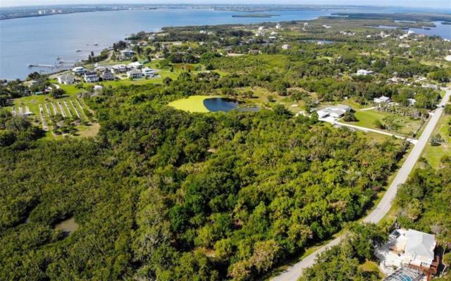 1450 Bayshore Drive, Terra Ceia, FL 34250 (MLS #A4414073) :: Lovitch Realty Group, LLC