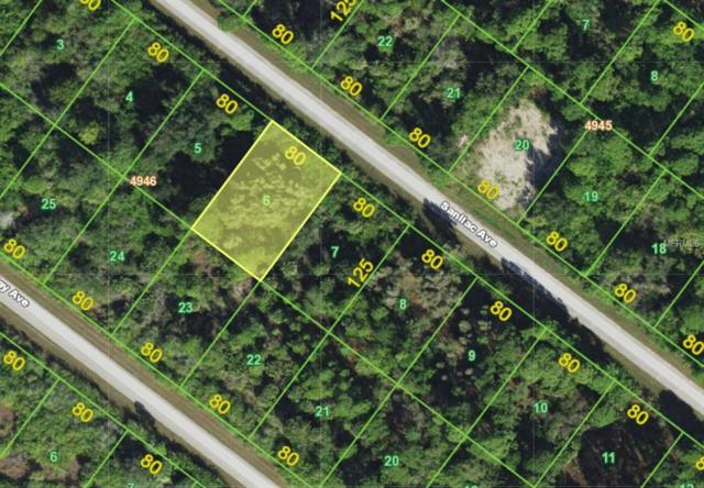 14285 Sanilac Avenue, Port Charlotte, FL 33981 (MLS #A4414349) :: Medway Realty