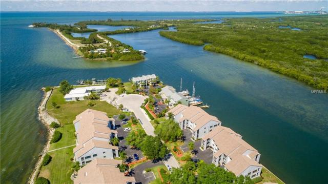 809 Bahia Del Sol Drive #72, Ruskin, FL 33570 (MLS #A4414749) :: The Duncan Duo Team
