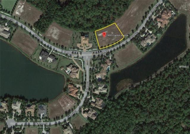 19005 Ganton Avenue, Bradenton, FL 34202 (MLS #A4415369) :: The Duncan Duo Team