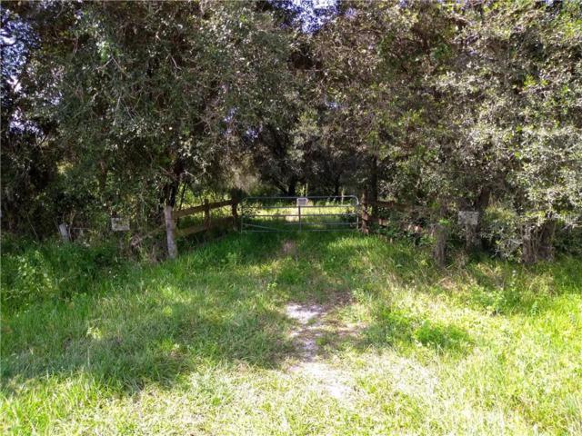 14250 County Line Road, Myakka City, FL 34251 (MLS #A4415529) :: Cartwright Realty