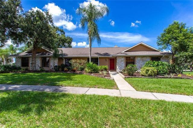 2701 Fairway View Drive, Valrico, FL 33596 (MLS #A4415819) :: Welcome Home Florida Team