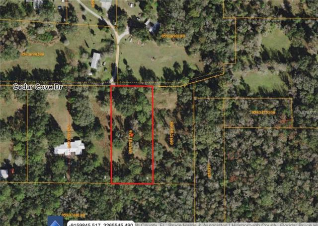 10817 Cedar Cove Drive, Thonotosassa, FL 33592 (MLS #A4415963) :: Burwell Real Estate
