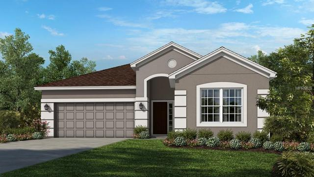 7906 Lotus Creek Court, Riverview, FL 33578 (MLS #A4416003) :: The Duncan Duo Team