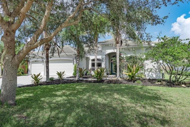 12707 Kite Drive, Bradenton, FL 34212 (MLS #A4416006) :: Medway Realty