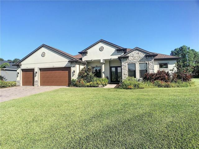 2532 163RD Terrace E, Parrish, FL 34219 (MLS #A4416066) :: The Light Team