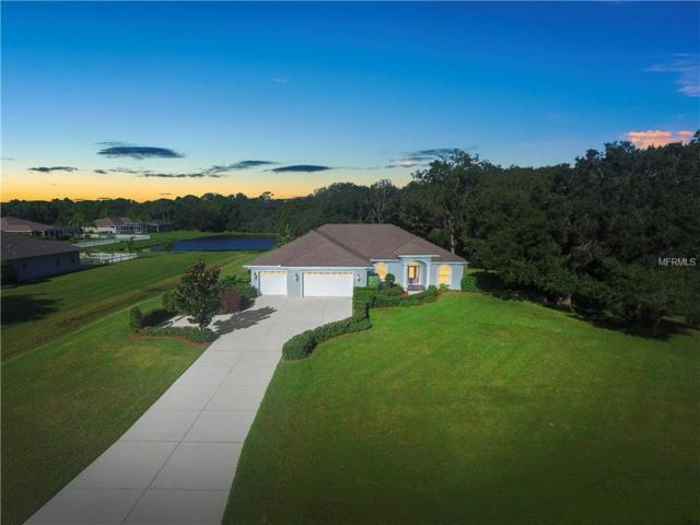 5211 Deer Forest Place, Parrish, FL 34219 (MLS #A4416534) :: RE/MAX CHAMPIONS