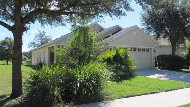 6231 Blue Runner Court, Lakewood Ranch, FL 34202 (MLS #A4416573) :: Medway Realty