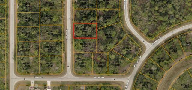 Teakwood Street, North Port, FL 34288 (MLS #A4416843) :: Griffin Group