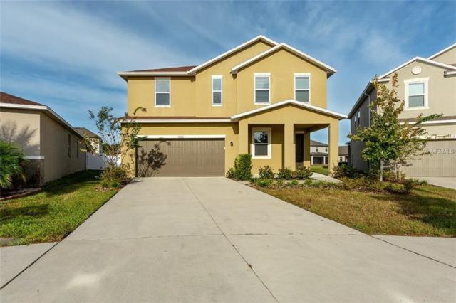 10610 Aldo Moro Drive, Wimauma, FL 33598 (MLS #A4417105) :: Dalton Wade Real Estate Group