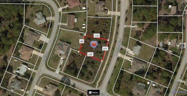 Salford Boulevard, North Port, FL 34286 (MLS #A4417261) :: Team Touchstone