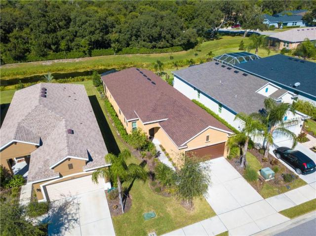 9944 Sheltering Spruce Street, Englewood, FL 34223 (MLS #A4417470) :: The Light Team