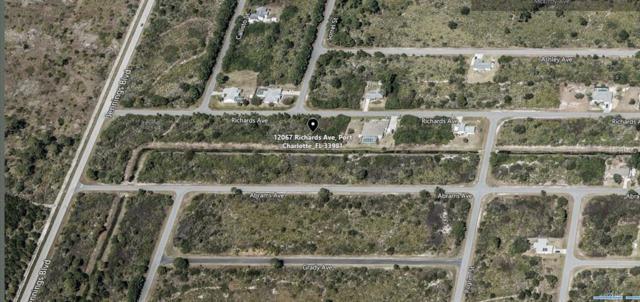 12067 Richards Avenue, Port Charlotte, FL 33981 (MLS #A4417754) :: Burwell Real Estate