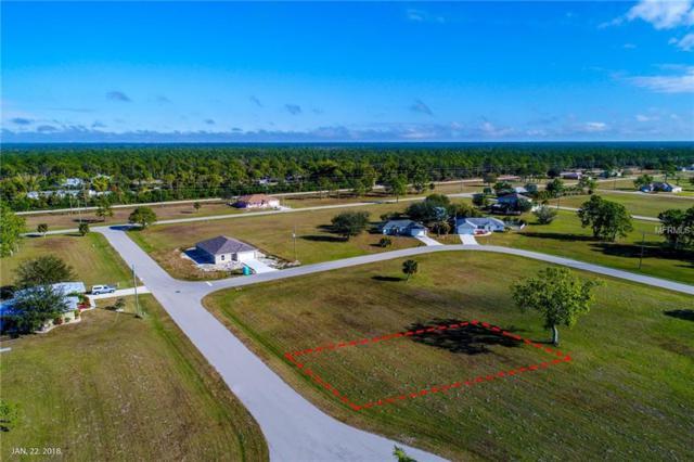 16070 Quinta Drive, Punta Gorda, FL 33955 (MLS #A4417918) :: Medway Realty