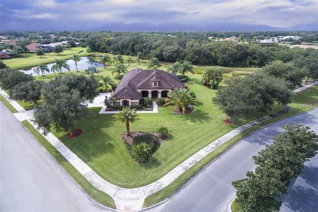 3820 Twin Rivers Trail, Parrish, FL 34219 (MLS #A4418071) :: The Duncan Duo Team