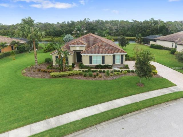 17105 E 1ST Drive, Bradenton, FL 34212 (MLS #A4418174) :: Premium Properties Real Estate Services