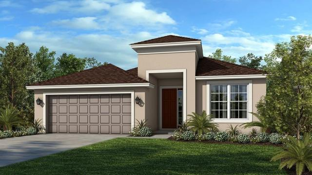 7822 Red Hickory Place, Riverview, FL 33578 (MLS #A4418299) :: The Duncan Duo Team