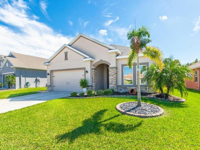 11107 77TH Street E, Parrish, FL 34219 (MLS #A4418688) :: Medway Realty
