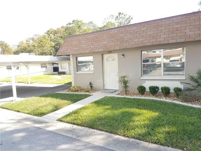 11806 Carissa Lane, New Port Richey, FL 34654 (MLS #A4418847) :: Zarghami Group