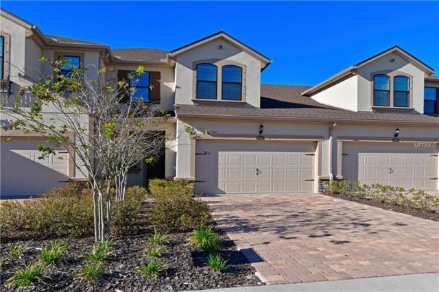 11623 Meadowgate Place, Bradenton, FL 34211 (MLS #A4418984) :: Medway Realty