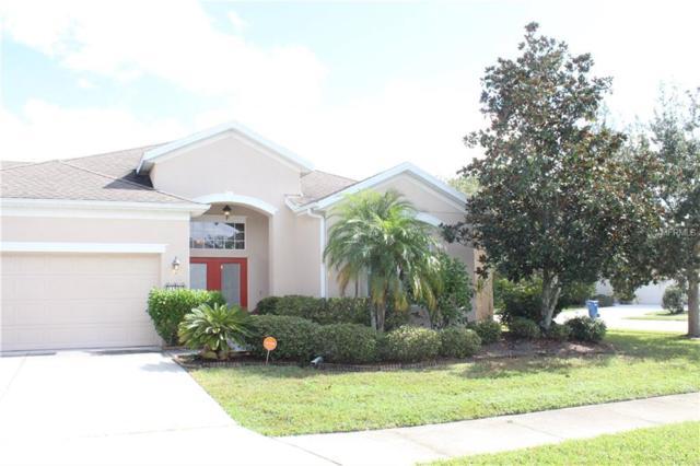 11325 Durham Street, Parrish, FL 34219 (MLS #A4419020) :: Medway Realty