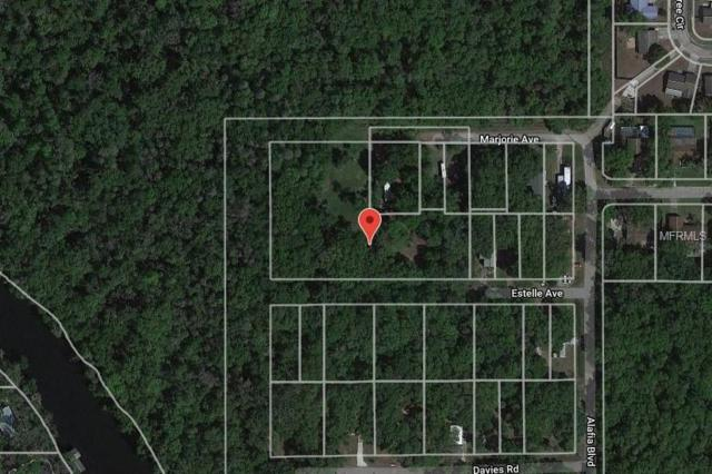 Address Not Published, Brandon, FL 33511 (MLS #A4419331) :: The Duncan Duo Team