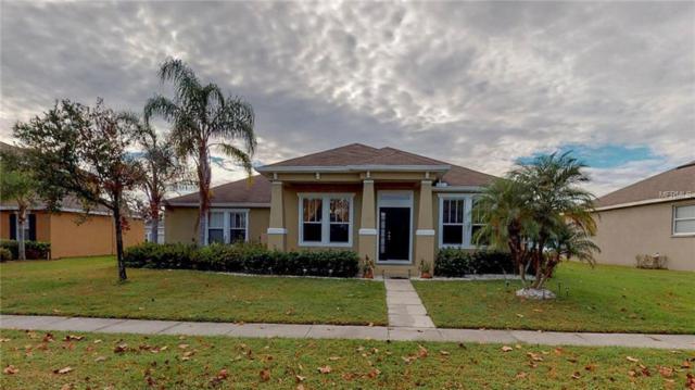 3391 Marshfield Preserve Way, Kissimmee, FL 34746 (MLS #A4419710) :: EXIT King Realty