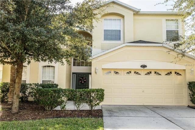10717 Pictorial Park Drive, Tampa, FL 33647 (MLS #A4419942) :: Revolution Real Estate