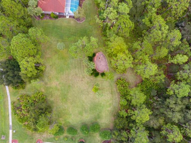 21724 Deer Pointe Crossing, Bradenton, FL 34202 (MLS #A4420029) :: Griffin Group