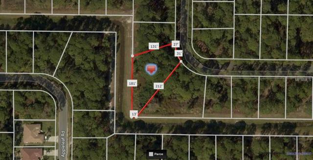 Apricola Road, North Port, FL 34286 (MLS #A4420077) :: Homepride Realty Services