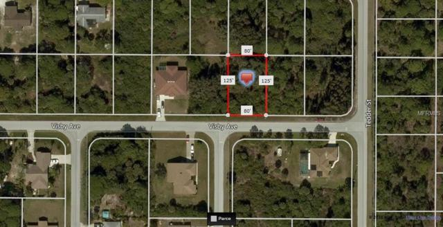 11430 Visby Avenue, Port Charlotte, FL 33981 (MLS #A4420111) :: Medway Realty