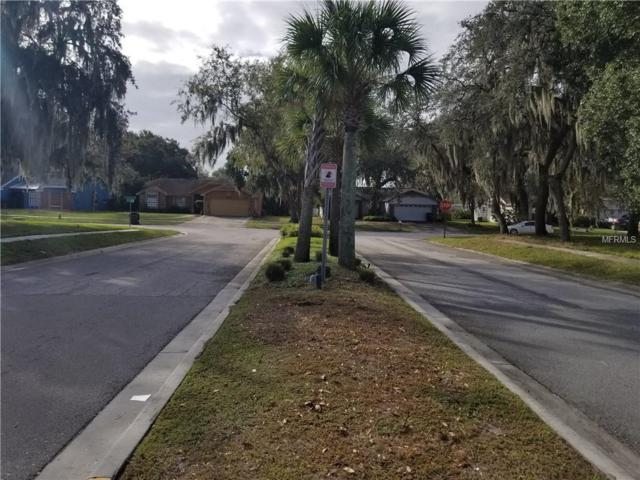 000 Wickerwood Drive, Riverview, FL 33569 (MLS #A4420627) :: The Duncan Duo Team