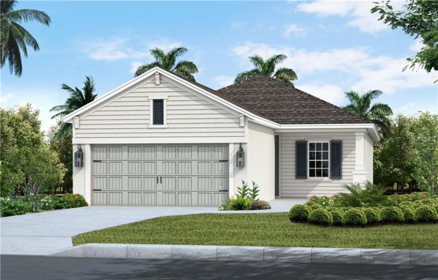 13552 Old Creek Court, Parrish, FL 34219 (MLS #A4420883) :: Team Pepka